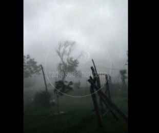 Video: temporal en Corrientes afectó a varias zonas del interior