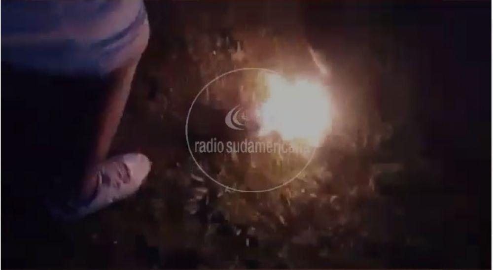 Maltrato animal: Quemaron vivo a un gato y grabaron un video
