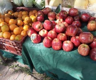 foto: Una ensalada de frutas para cuatro personas puede costar $800