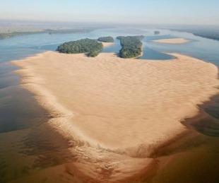 foto: Bajante del Paraná: Alertan por la vulnerabilidad de los peces