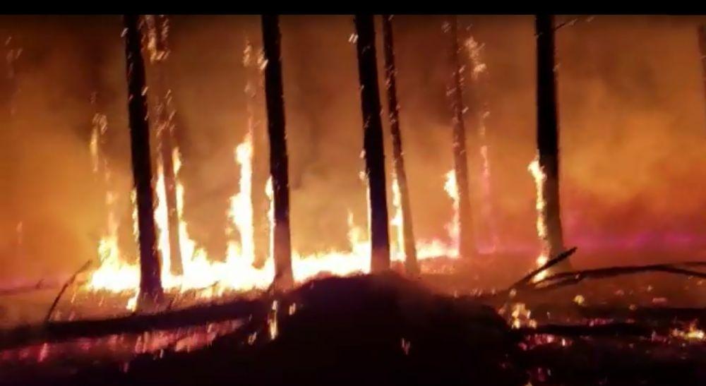 Santa Rosa, Bella Vista y Virasoro otra vez en medio de las llamas