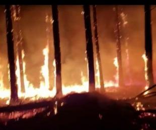 foto: Santa Rosa, Bella Vista y Virasoro otra vez en medio de las llamas