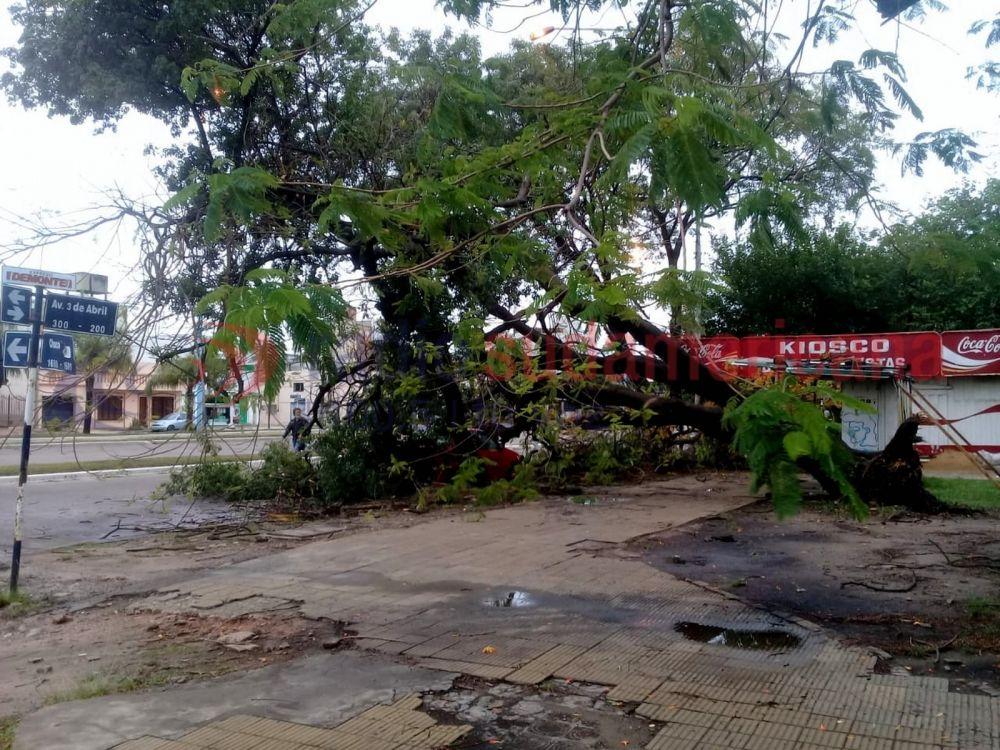 Así quedó la Ciudad tras la fuerte tormenta que afectó a la región
