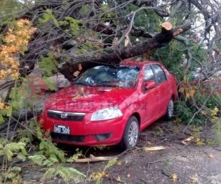 foto: Así quedó la Ciudad tras la fuerte tormenta que afectó a la región