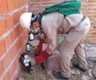 foto: Dengue: continúan las tareas preventivas en los barrios de Capital