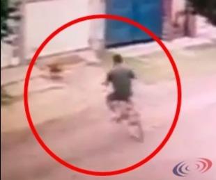 foto: Videos: así secuestraba el violador y asesino a la perrita