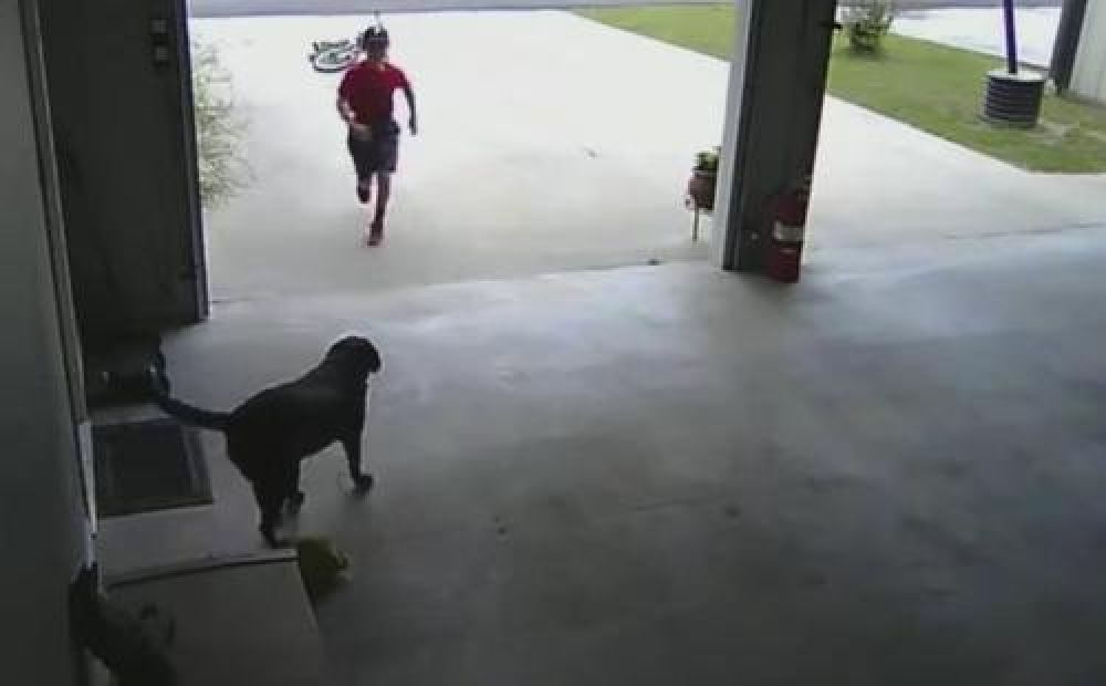 Un niño que se colaba en su casa para jugar en secreto con su perra