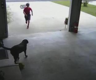 foto: Un niño que se colaba en su casa para jugar en secreto con su perra