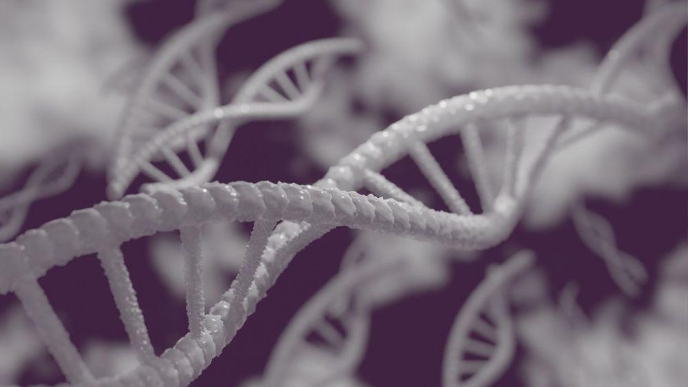 Se hizo un ADN y descubrió que es hija de un multimillonario