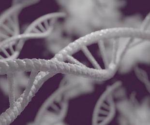foto: Se hizo un ADN y descubrió que es hija de un multimillonario
