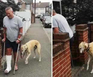 foto: Hizo revisar la renguera de su perro y descubrió que sólo lo imitaba