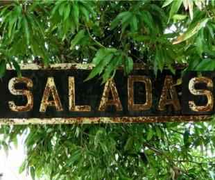 foto: Saladas: detectaron el primer caso de reinfección por coronavirus