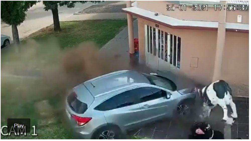 Milagro: un auto se incrustó en una carnicería y una mujer se salvó