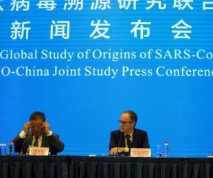 foto: La OMS en Wuhan aún no identificó qué animal originó el coronavirus