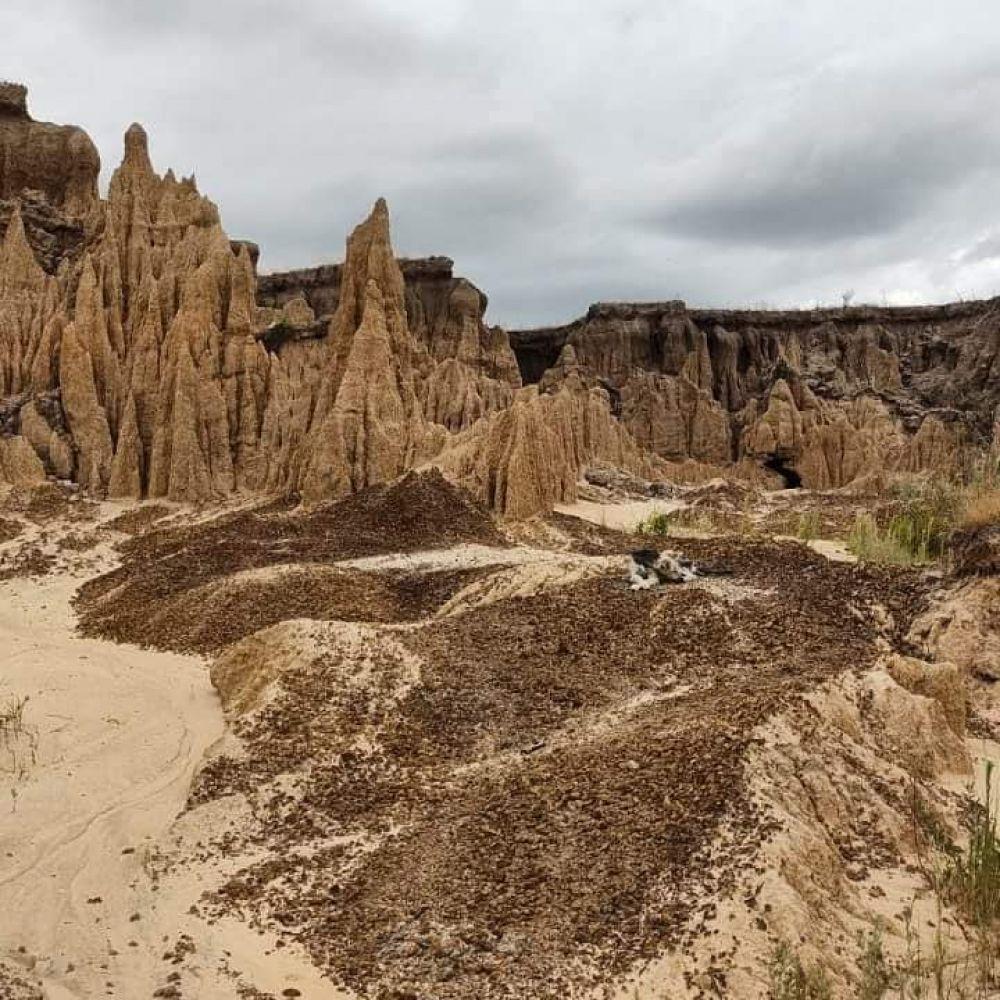 Conoce y Viví Toropí el yacimiento paleontológico de Corrientes