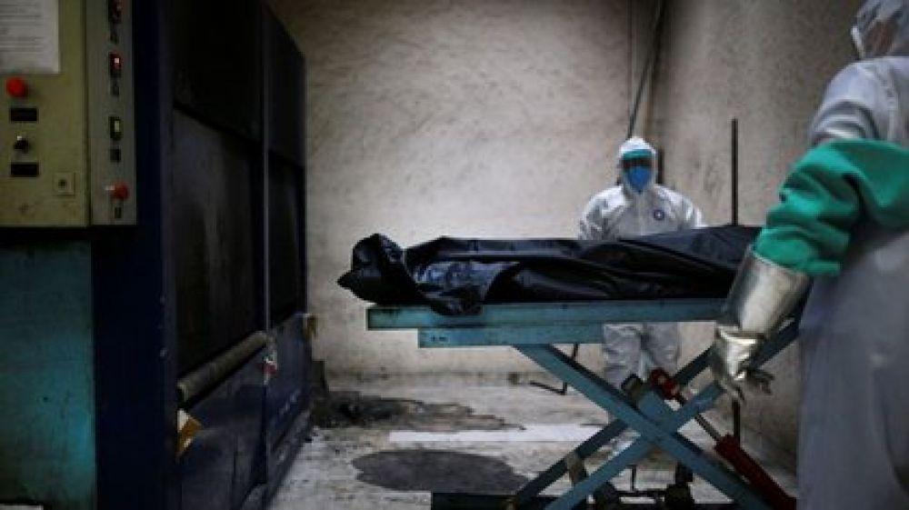 Ushuaia: acumulan cadáveres en un galpón desde marzo de 2020