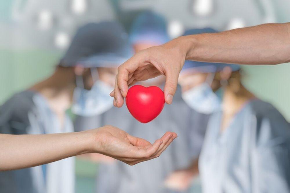 Día Internacional del Trasplante de Órganos: por qué se celebra hoy