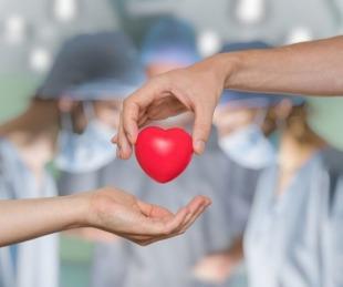 foto: Día Internacional del Trasplante de Órganos: por qué se celebra hoy