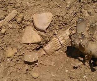foto: Santa Rosa: limpiaban una estancia y encontraron huesos humanos