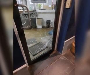 foto: Córdoba: un puma se estrelló contra la puerta de la Municipalidad