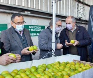 foto: Se certificó el primer cargamento de limones con destino a Europa