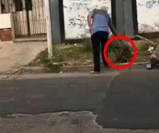 foto: A sangre fría un hombre mató de un tiro a un perro en Buenos Aires