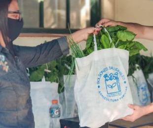 foto: Lanzan bolsones de frutas y verduras con 11 productos a $500