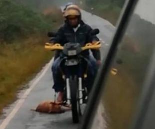 foto: Arrastraba un perro por la ruta, lo filmaron y fue identificado