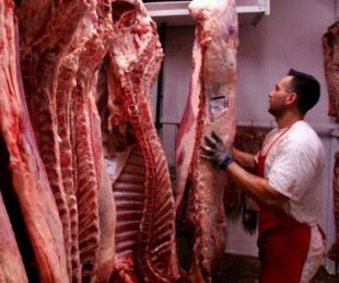 foto: Las exportaciones de carne vacuna cayeron un 45% en junio