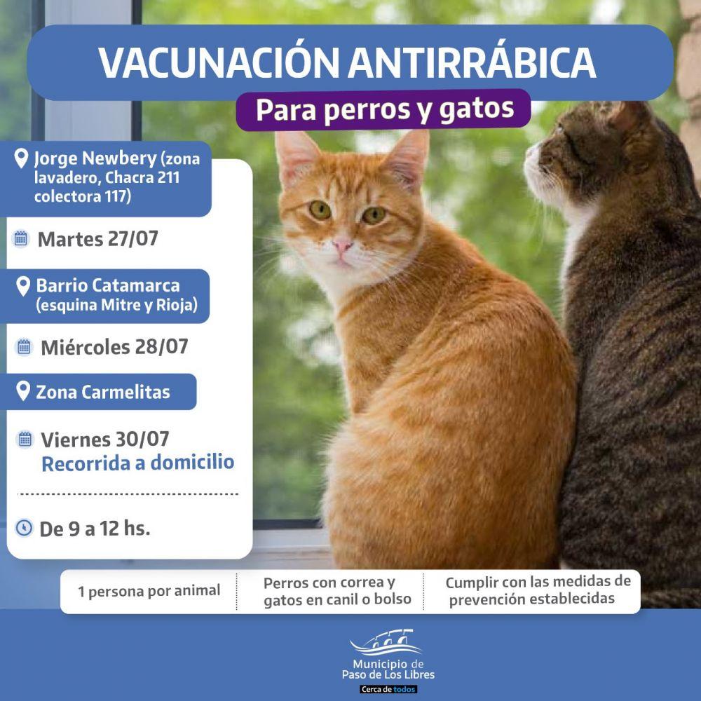 La Comuna libreña acercará vacunación antirrábica gratuita para mascotas