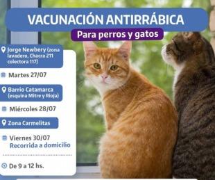 foto: La Comuna libreña acercará vacunación antirrábica gratuita para mascotas