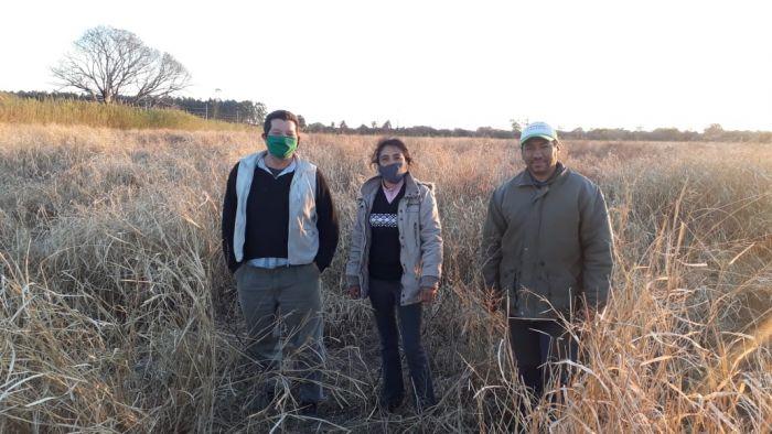 Plan Limón en Santa Rosa: Iniciaron las labores para la implantación
