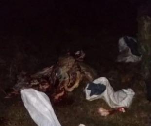 foto: Alvear: se tirotearon con cuatreros y secuestraron 500 kilos de carne