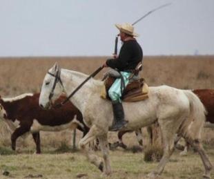 foto: Un peón fue pateado en la cara por un caballo y terminó internado