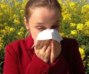 foto: Llegó la primavera y con ella las alergias: qué precauciones tomar