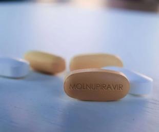 foto: Píldoras anti-COVID-19: Merck y Pfizer ya realizan ensayos clínicos