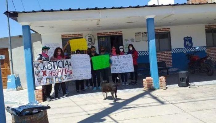 Jujuy: detienen a un hombre por violar y desmembrar a una perra